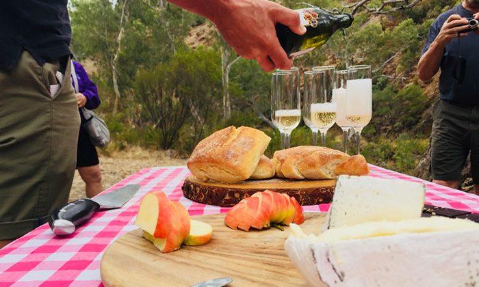 fleurieu-picnic-robinesrock
