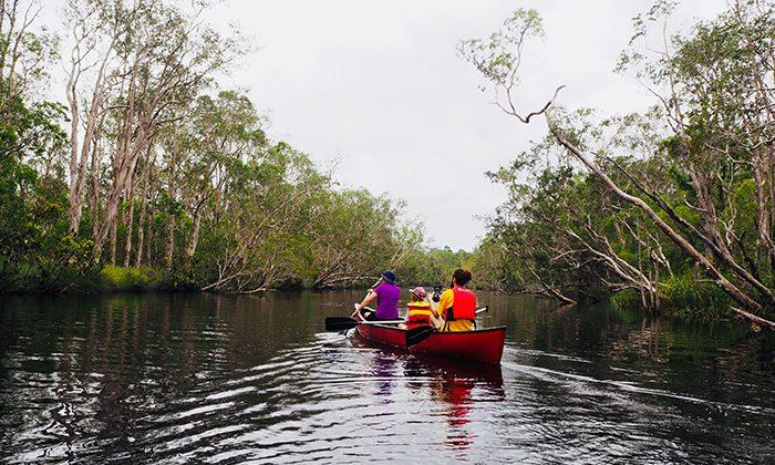 noosa-canoebehind-robin-esrock
