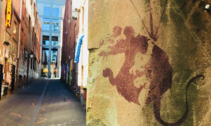 streetart-banksy---robin-esrock