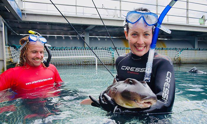 tuna-shark-robin-esrock