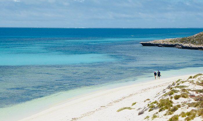 abrolhos---island-walk---robin-esrock