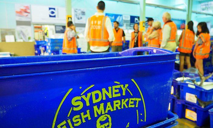 fish--container--EWM