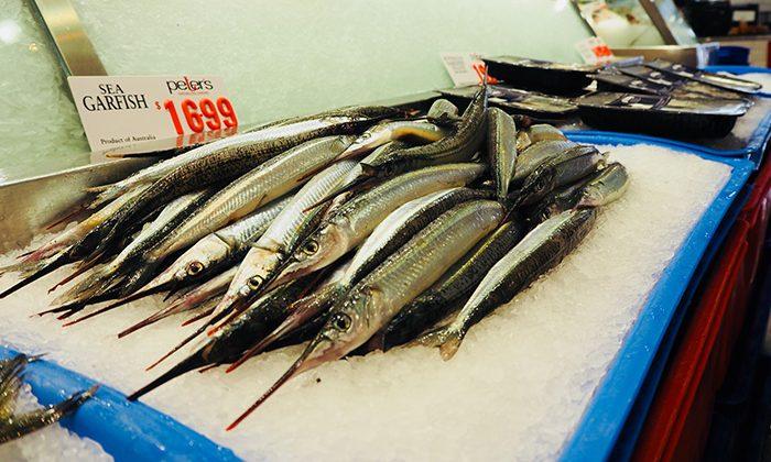 fish--rows--EWM