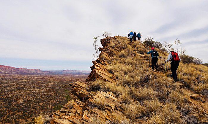 larapinta-ridge-Robin-Esrock