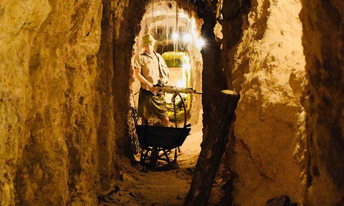 sydney-digging-tunnels---robin-esrock